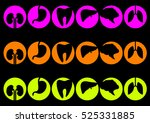 human organs   vector icons... | Shutterstock .eps vector #525331885