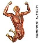 Jumping Man Muscle Study
