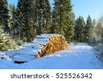 Woodpile In The Winter Forest...
