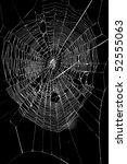 a spider web | Shutterstock . vector #52555063