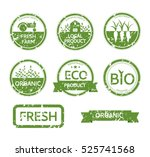 set of organic healthy  vegan... | Shutterstock .eps vector #525741568