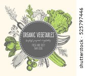design template for vegetables... | Shutterstock .eps vector #525797446