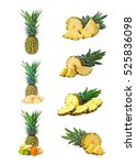set of pineapple fruits with... | Shutterstock . vector #525836098