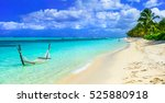 tropical chilling out   hammock ... | Shutterstock . vector #525880918