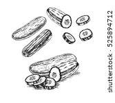 hand drawn set of cucumber.... | Shutterstock .eps vector #525894712