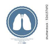human organ light | Shutterstock .eps vector #526157692
