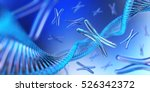 chromosome. dna. 3d rendering. | Shutterstock . vector #526342372