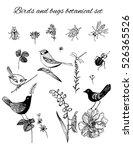 vector floral design elements... | Shutterstock .eps vector #526365526