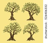 set of greek olive oil trees in ... | Shutterstock .eps vector #526406332