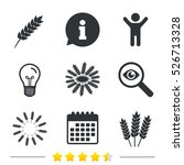 agricultural icons. gluten free ... | Shutterstock . vector #526713328