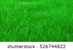 green lawn in the front garden  ... | Shutterstock . vector #526744822