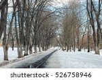 thaw snow lanscape tree   Shutterstock . vector #526758946