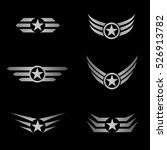 Silver Wings And Star Emblem....