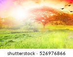 nature background concept | Shutterstock . vector #526976866