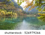 the colorful autumn of... | Shutterstock . vector #526979266