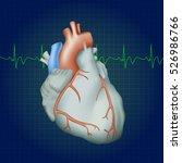 human heart. anatomy... | Shutterstock .eps vector #526986766