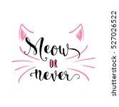 vector illustration of kitten... | Shutterstock .eps vector #527026522