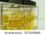 anaerobic bacteria culture and... | Shutterstock . vector #527059885