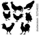 Large Set Of Rooster Silhouette