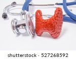 anatomical shape of the... | Shutterstock . vector #527268592