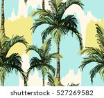 beautiful seamless vector... | Shutterstock .eps vector #527269582