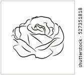 rose  flower  vector icon  eps10   Shutterstock .eps vector #527351818