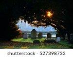 Morning Light On Graves In A...