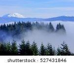 foggy rocky mountains | Shutterstock . vector #527431846