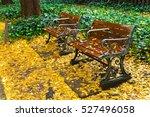Ginkgo Leaves Fall On Wood...