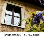Window And Wisteria