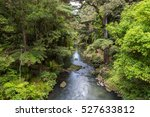 Waterfall In New Zealand Forest ...