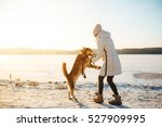 Stock photo woman with dog walking down the village street in the snow 527909995