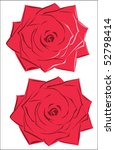 red rose blossoms   isolated on ... | Shutterstock .eps vector #52798414