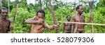 Wild Jungle Of New Guinea...