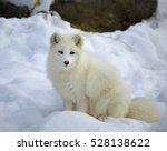 quebec  canada   january 23 ... | Shutterstock . vector #528138622