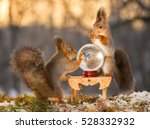 red squirrels standing with ... | Shutterstock . vector #528332932