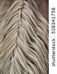 horse mane. | Shutterstock . vector #528341758