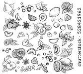 sketch vector set of different... | Shutterstock .eps vector #528431962