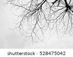 dead tree | Shutterstock . vector #528475042