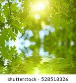 fresh green leaves reflecting... | Shutterstock . vector #528518326