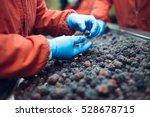 people at work. unrecognizable...   Shutterstock . vector #528678715