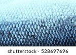fish scale  closeup | Shutterstock . vector #528697696