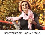 beautiful middle aged woman in... | Shutterstock . vector #528777586