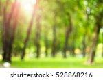 Defocused Natural Green Tree...