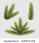 spruce branch with cones.... | Shutterstock .eps vector #528921148