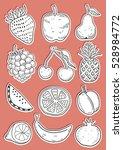 hand drawn fruits | Shutterstock .eps vector #528984772