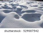 snow field texture background | Shutterstock . vector #529007542
