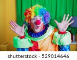clown with queer expression on... | Shutterstock . vector #529014646