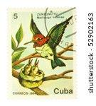 cuba   circa 1984  a stamp... | Shutterstock . vector #52902163