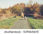 Stock photo elderly woman walking with a young a boy on a bicycle in a park with autumn colored leaves 529065655